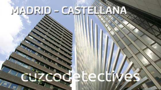 Detectives en castellana
